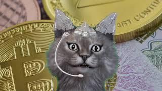 米国最大のスーパーマーケットがビットコイン決済導入か!