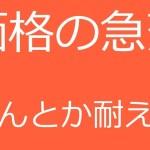 【ビットコイン】12万円の利益が確定しました(19年6月10日)。