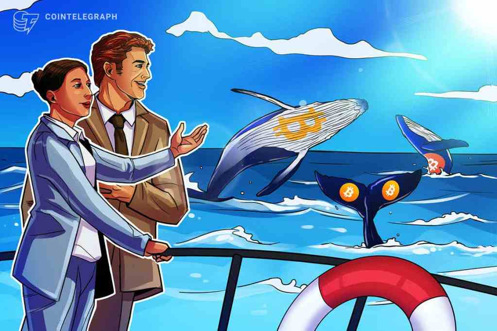 Price spike: Are whales front-running the approval of a Bitcoin futures ETF?