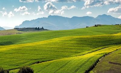 Blockchain technology land ownership