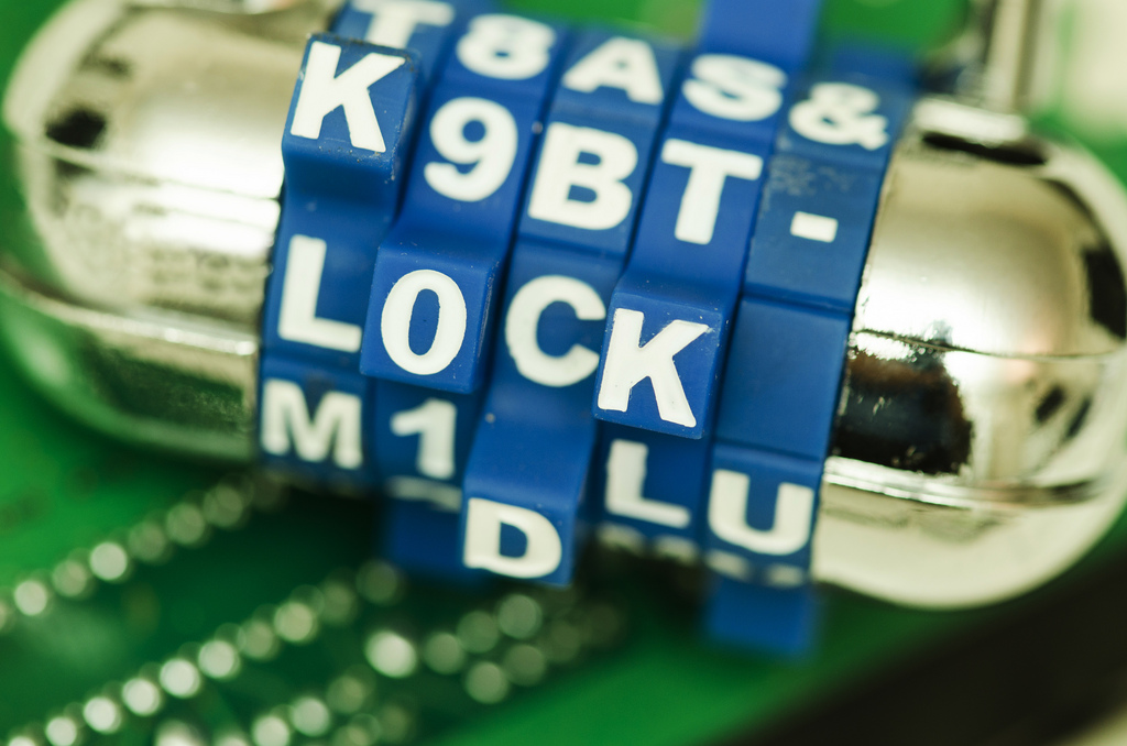 computer_lockdown_by_Perspecsys_Photos_flickr