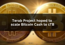 Terab Project Hoping To Help Scale Bitcoin Cash BCH To 1TB Blocks