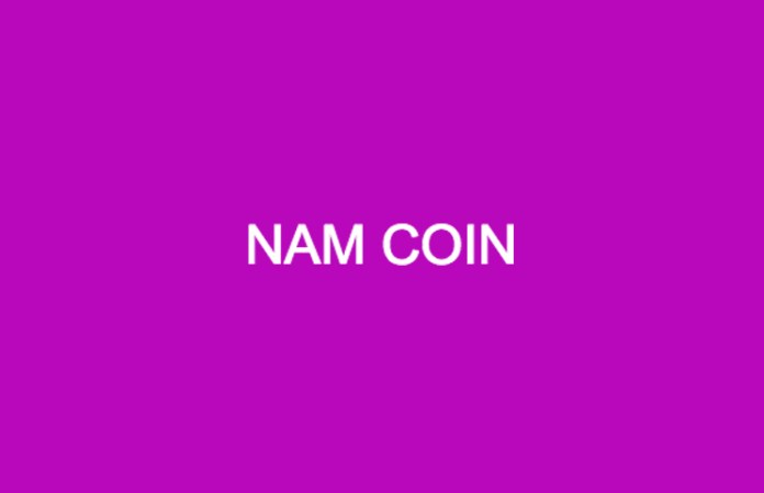 NAM Coin ICO Review