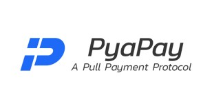 PyaPay ICO (PYP Token) Review: