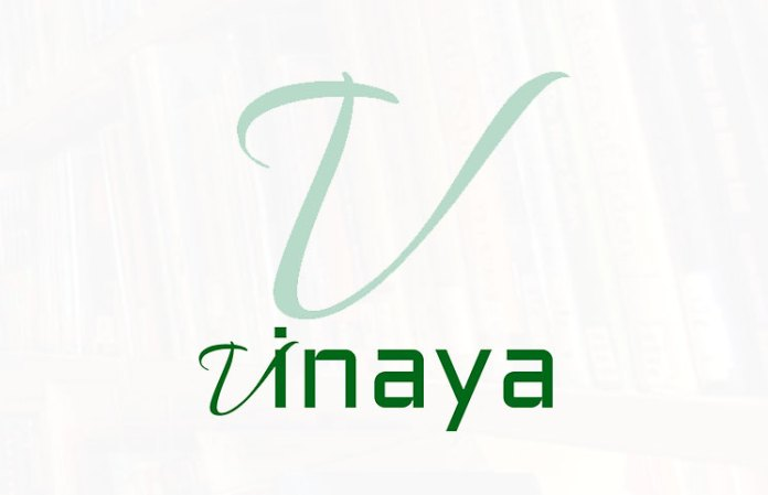 What To Know About The Vinaya Platform?
