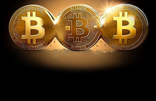 Exclusive no deposit online bitcoin casino