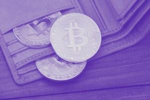 Bitcoin Wallet, Bitcoin Hardware wallet, Bitcoin Aufbewahrung