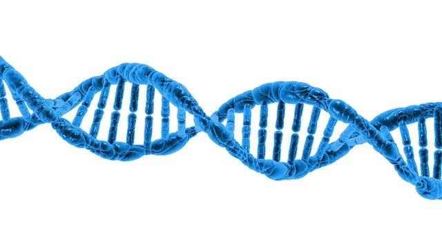 DNA data
