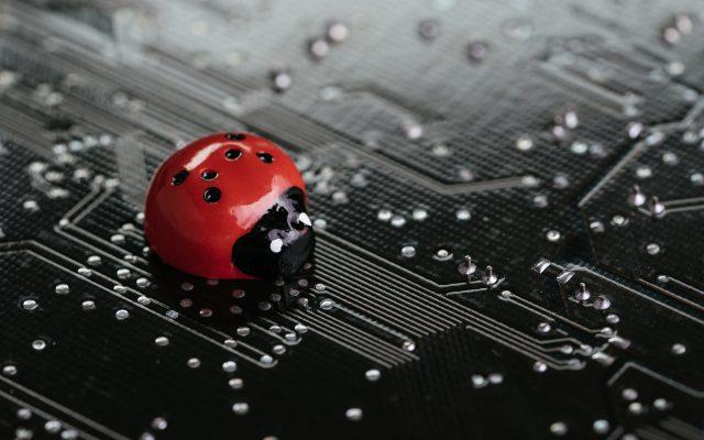 bitcoin lightning network bugs