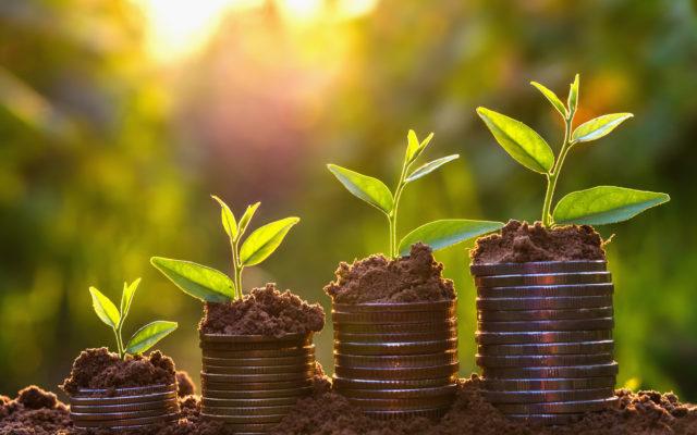 bitcoin price profit investment