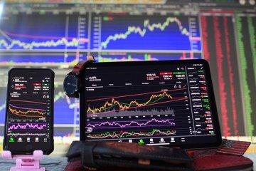investidores de bitcoin