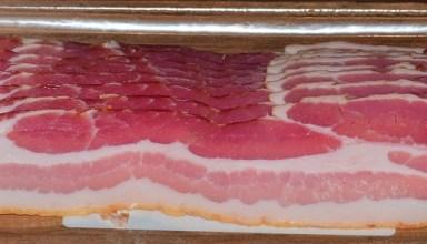 Oscar Mayer's Bacoin to bring home the bacon?