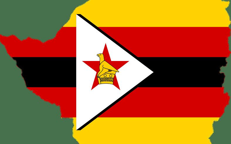 "Golix Sues Zimbabwe Reserve Bank over ""Illegal"" Crypto Ban"
