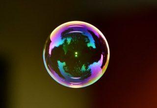 Brazilian Crypto Expert Rejects Tulip Bubble Comparison