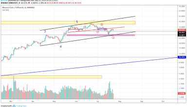 BNB Market Analysis: The Price Zone of $24-25 Is in Jeopardy
