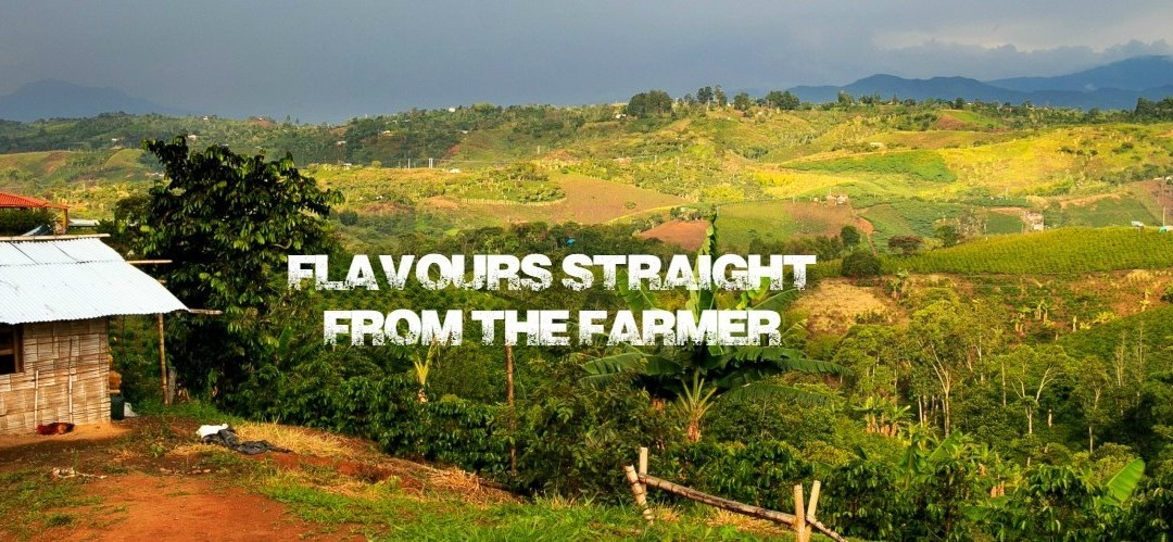 Pro-Bitcoin Flavours Place Platform Strengthens Support to Businesses and Coffee Farmers Worldwide
