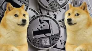 dogminerbitmain.jpg