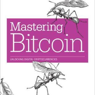 mastering bitcoin, book,