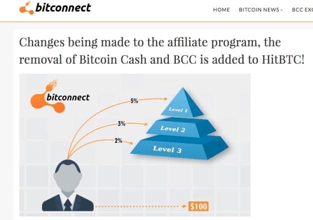 bitcoin, btc, bch, bcc, scam, investment, ponzi, pyramid scheme, altcoins, iota, verge,