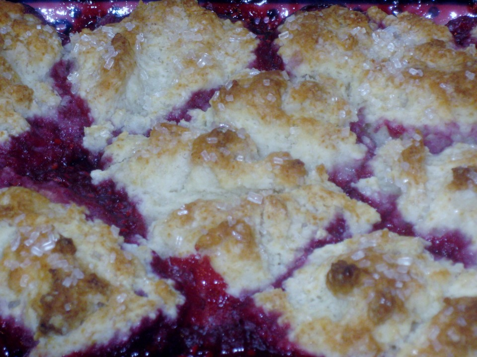 Raspberry Cobbler and Springtime Showers