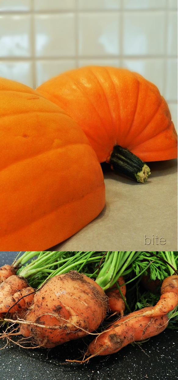 pumpkin and carrots