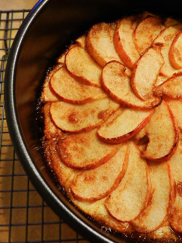 Apple Torte