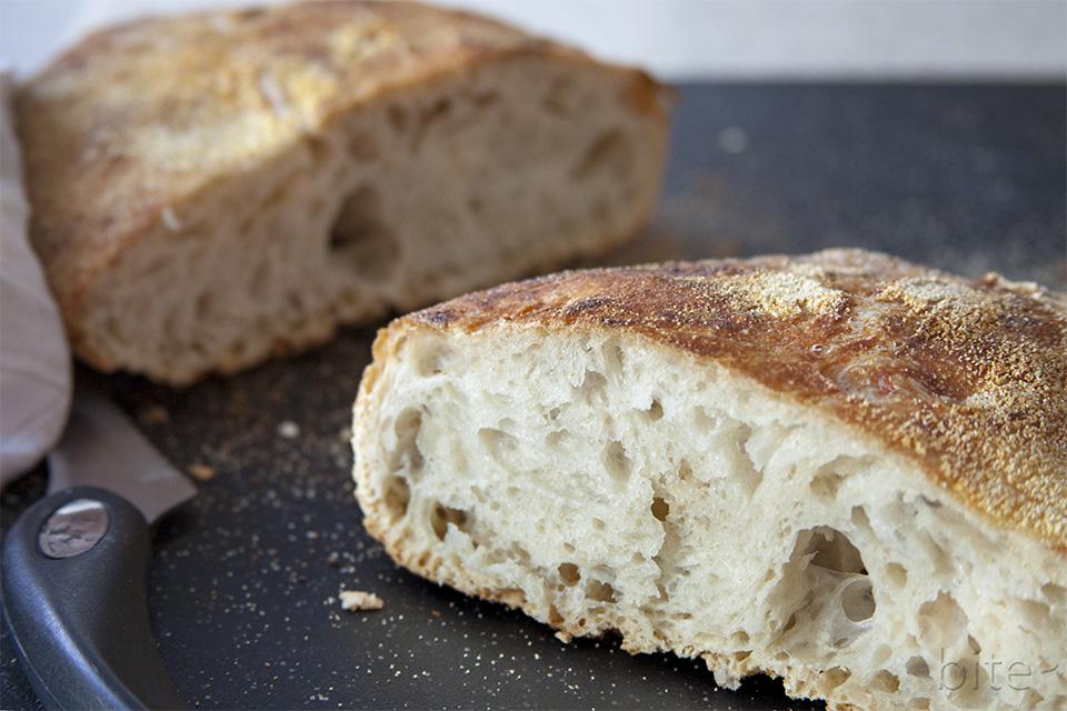 No-Knead Bread / bitebymichelle.com