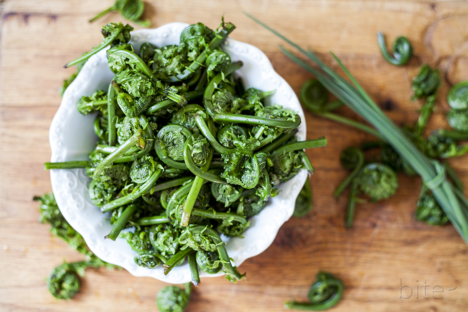 fiddleheads - Yummy Victoria Day Weekend! / bitebymichelle.com