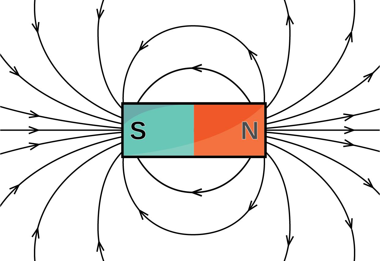 Animal Navigation Using Magnetic Fields Bitescis