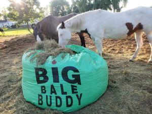 Big bale buddy bitless equestrian