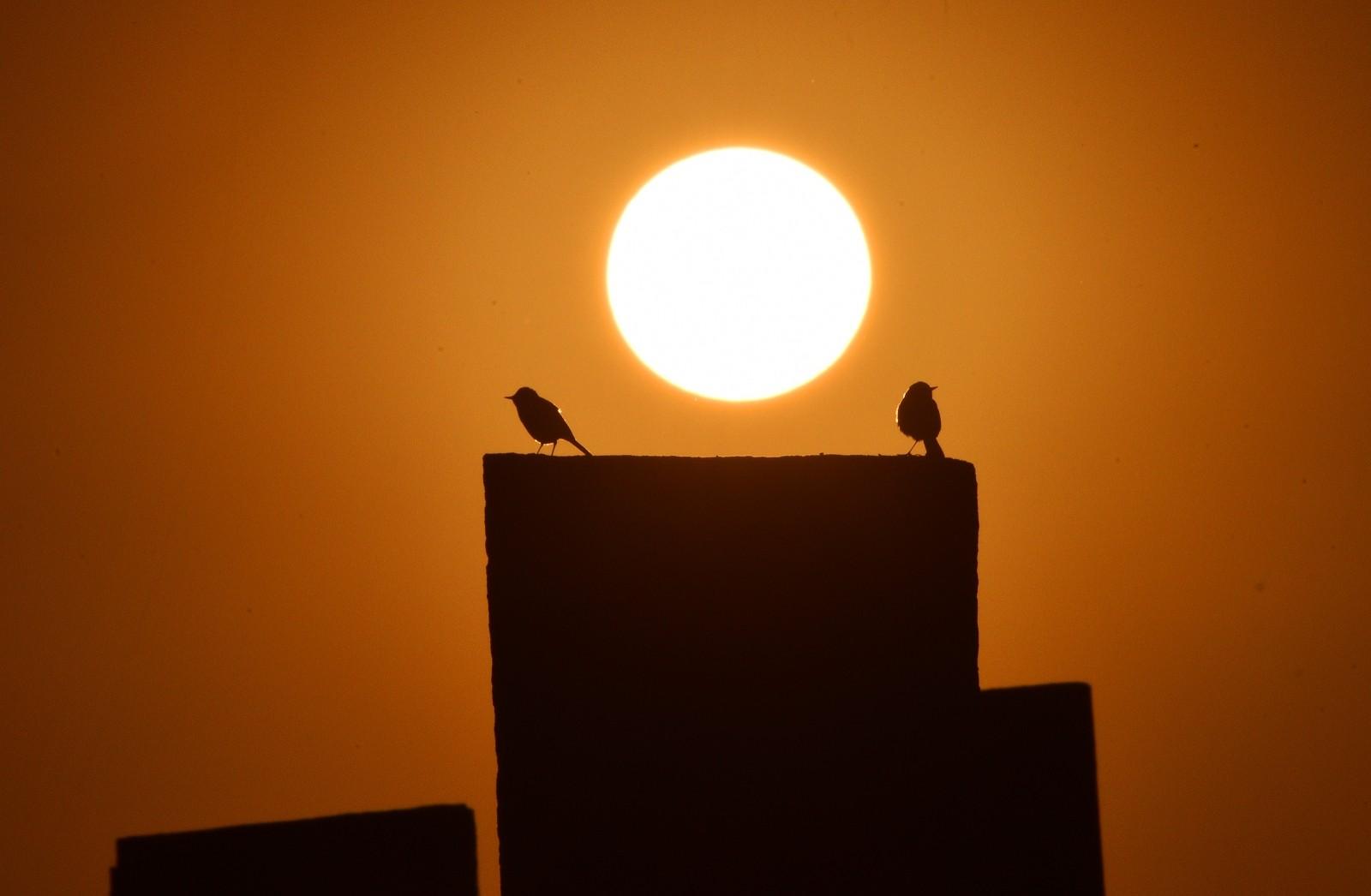 (Özel Haber) Tarihi Selçuklu Meydan Mezarlığı'nda seyrine doyumsuz gün batımı