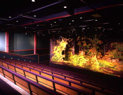 Seattle Childrens smaller theater