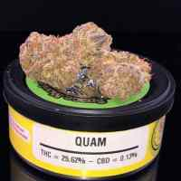 buy quam weed cans
