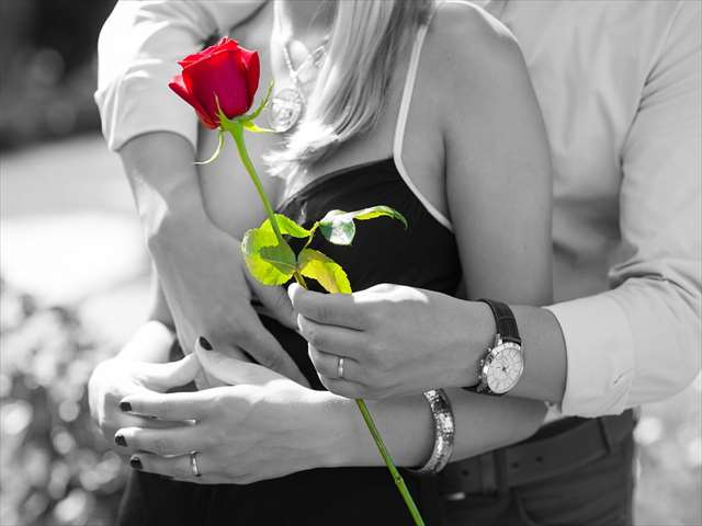 モノクロ赤い薔薇