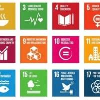 SDGs 2030 – Wie Unternehmen Ihren Beitrag leisten können