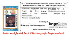 Amber card front & back (Derby-Shelton Rotary)