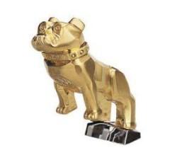 gold_bulldog