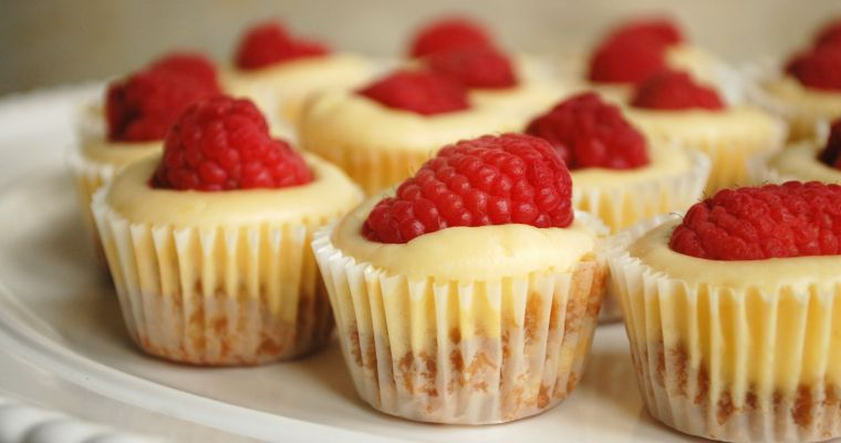 Raspberry Lemon Mini Cheesecakes