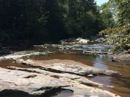 First view of the creek downstream.