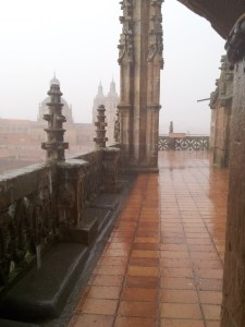 wet tiled floor on the top of Cathedral in Salamanca