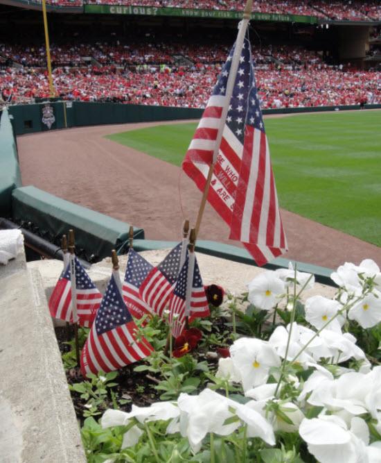 Flags busch