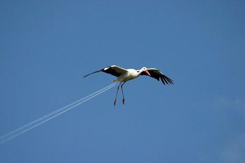 Jet propelled