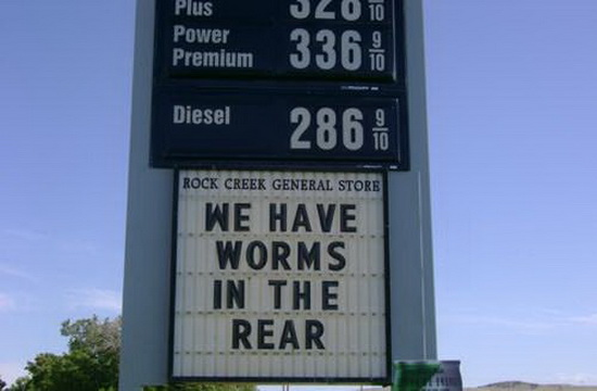 Worms in thwe rear