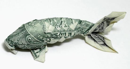Money catfish