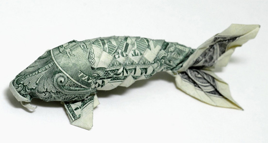 Money catfish