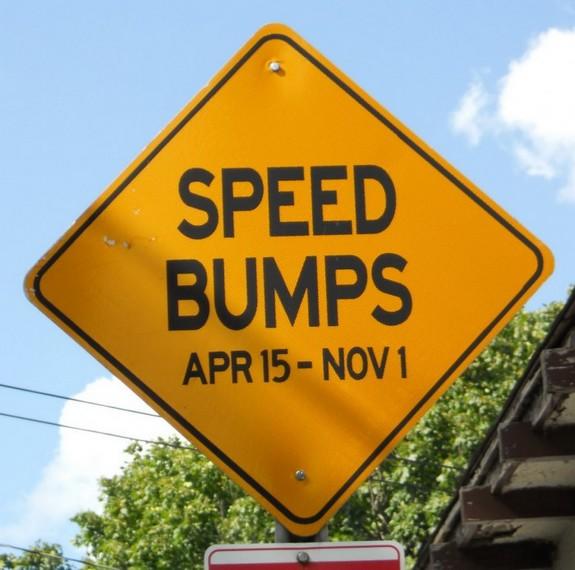 Seasonal speed bumps