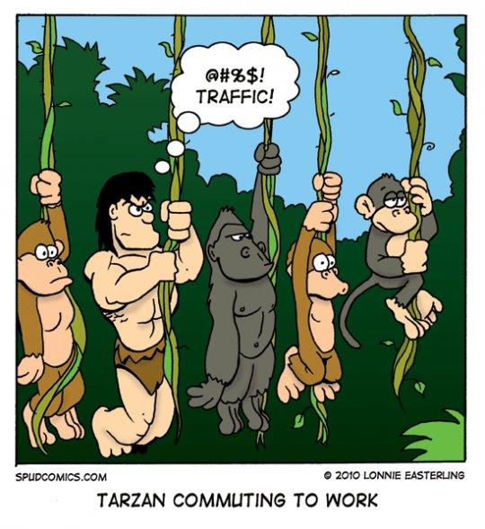 Jungle commute