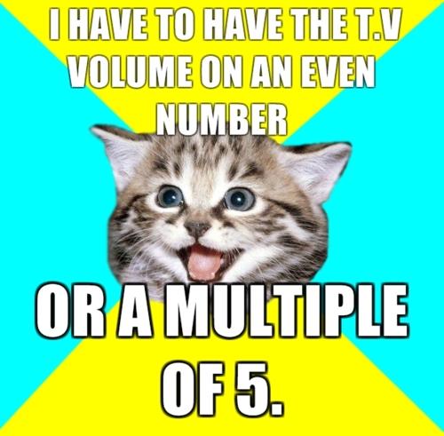Happy cat superstition