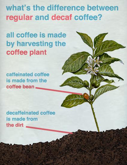 Coffee vs decaf