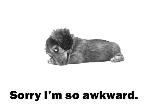 Sorry im so awkward